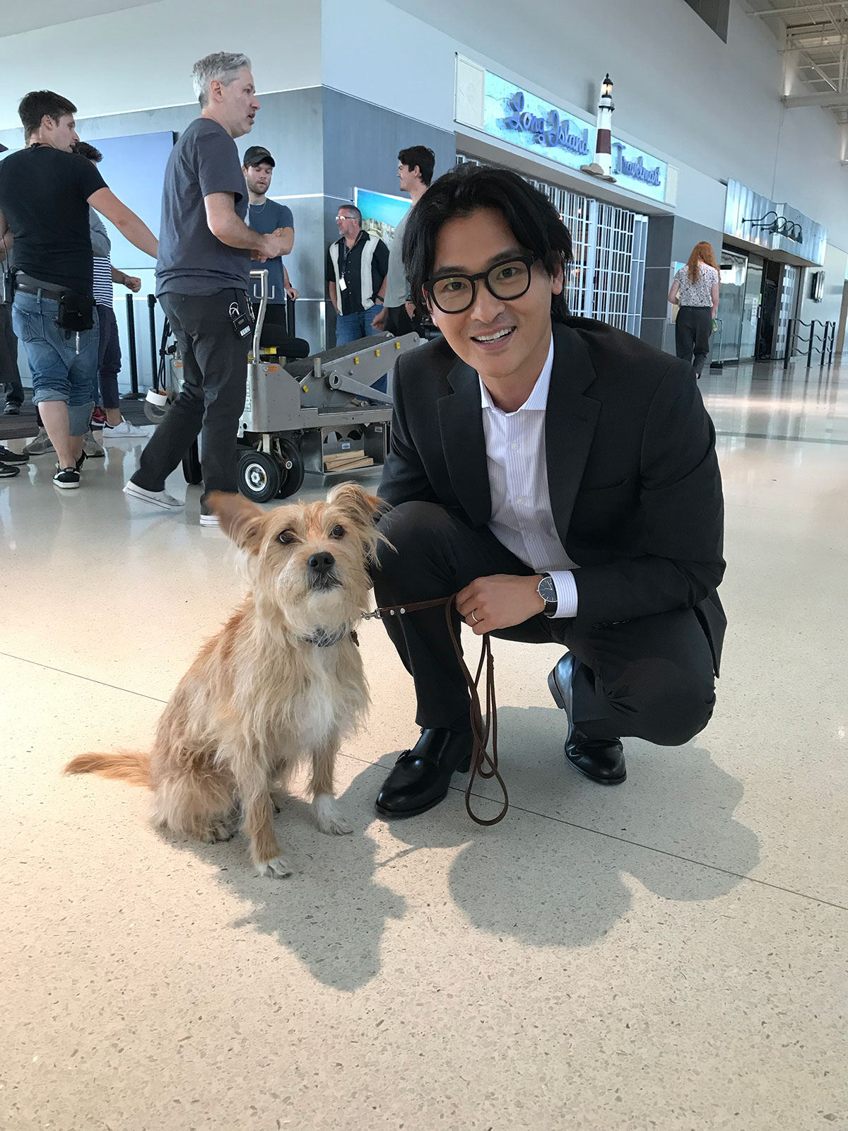 Clear, Airport, Dog