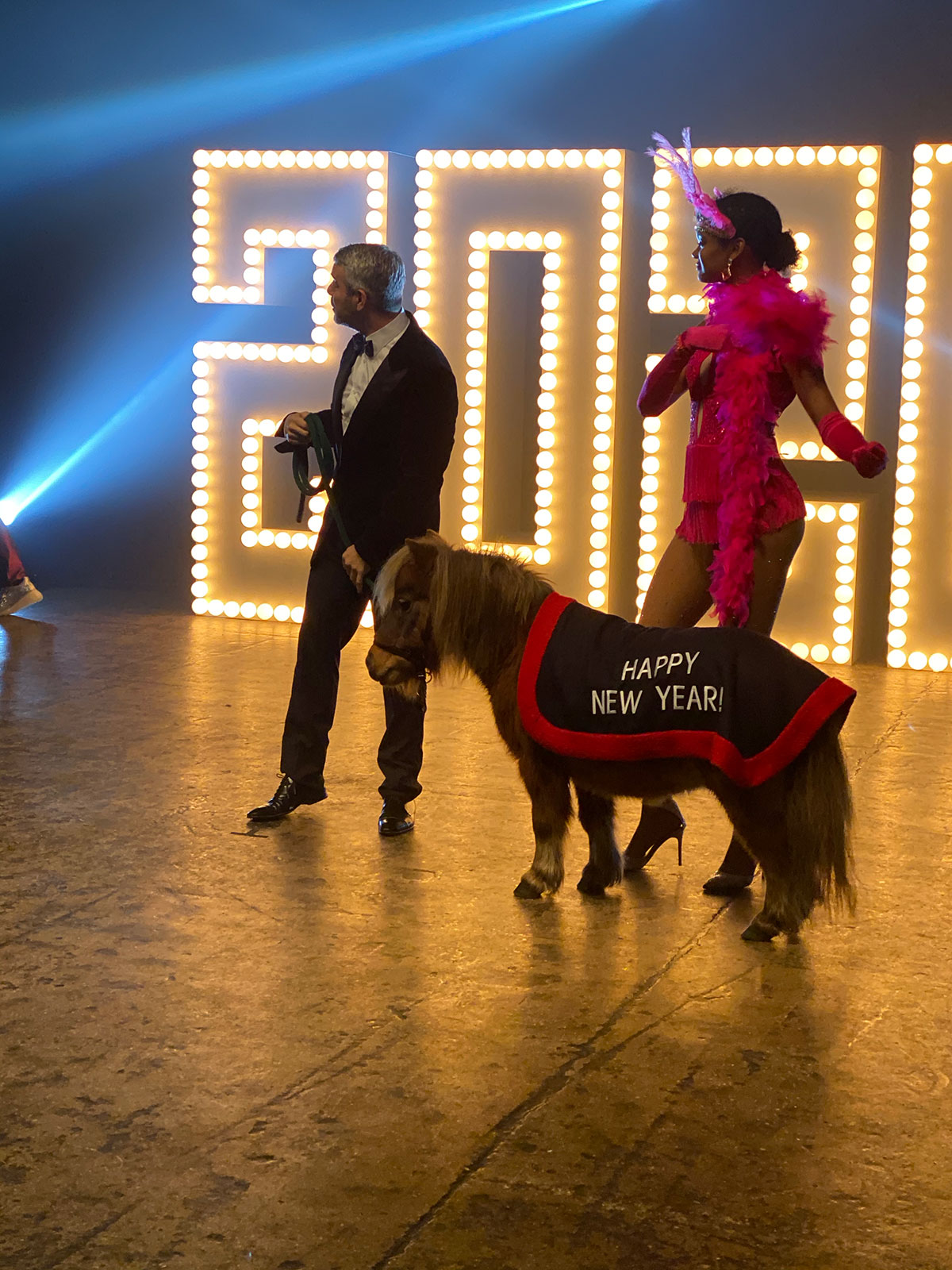 CNN, NYE, New Years Eve, Andy Cohen, Anderson Cooper, mini horse, pony