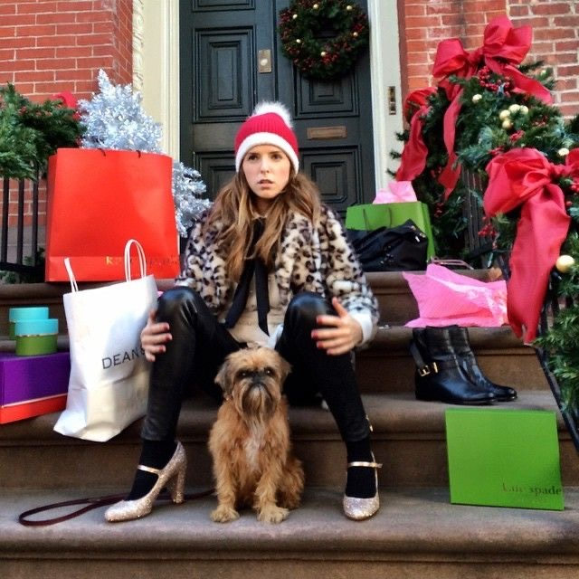 Kate Spade, Anna Kendrick, Brussels Griffon, dog in bag